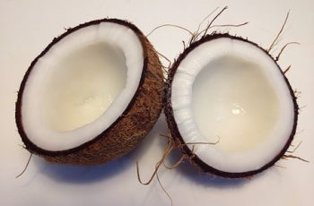 coconut related business ideas