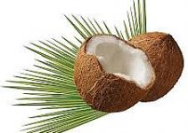 Coconut Based Business