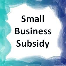 unemployed youth, Government Subsidy For Small Business