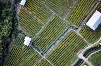 irrigation business ideas