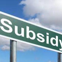 coconut subsidy