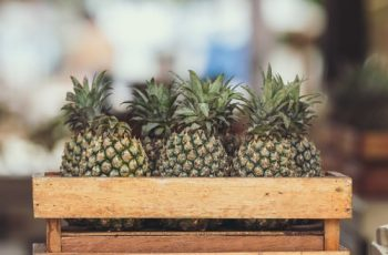 pineapple processing business ideas
