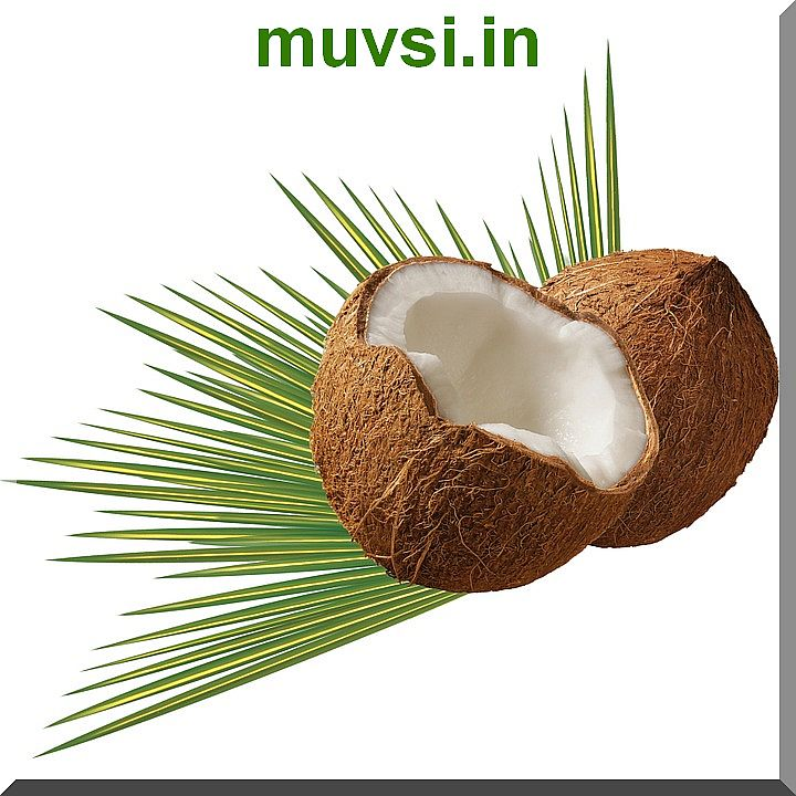 Coconut Producing Units