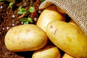 potato processing business ideas