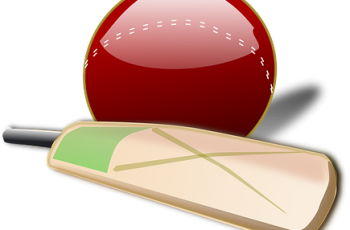how to start cricket bat making business