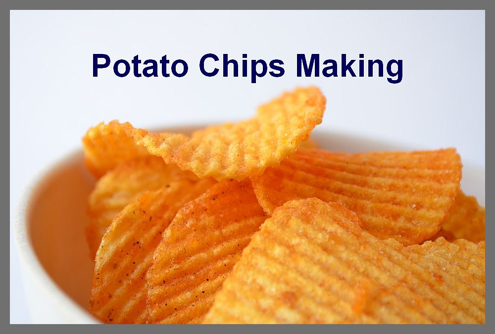 potato chips making businss plan project