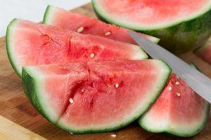 watermelon farming