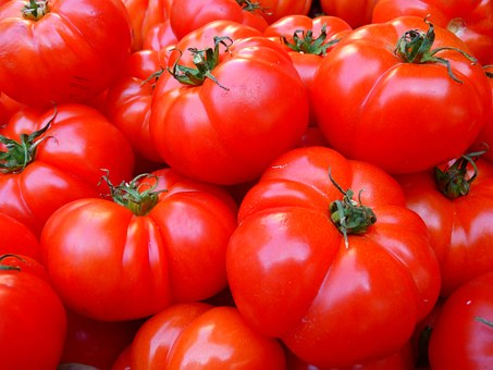 Tomato Farming Business - How to Start - Plan Guide for