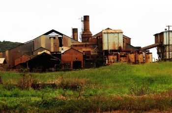 sugar mill project cost