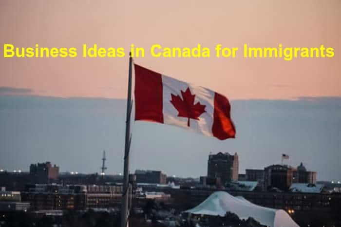 business opportunities in Canada for Indian Immigrants